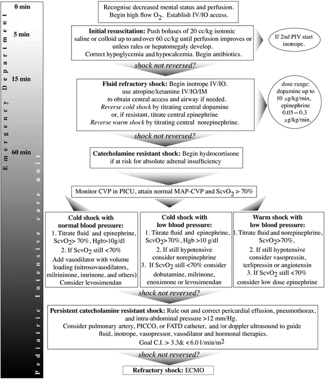 Pneumothorax treatment guidelines - Download Figure